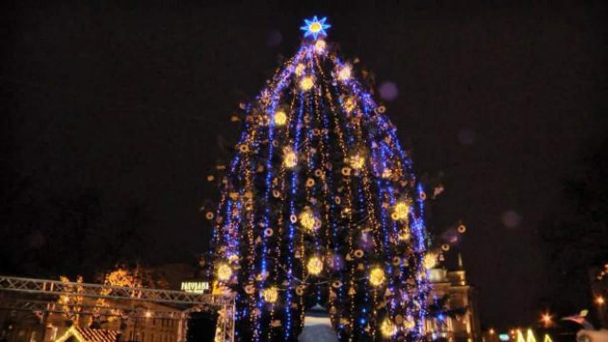 Де в Україні найвища ялинка: з'явився цікавий рейтинг