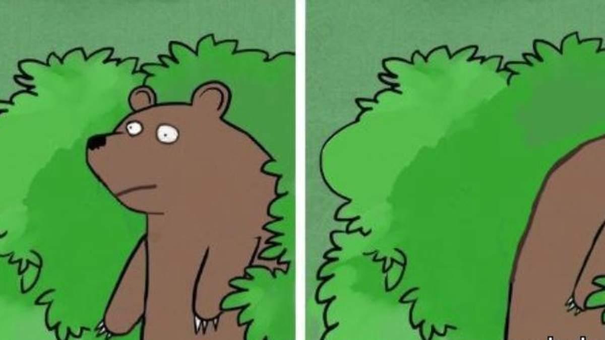 """""""Перевед медвед"""" та всі-всі-всі: як у Києві відзначили День ведмедя"""