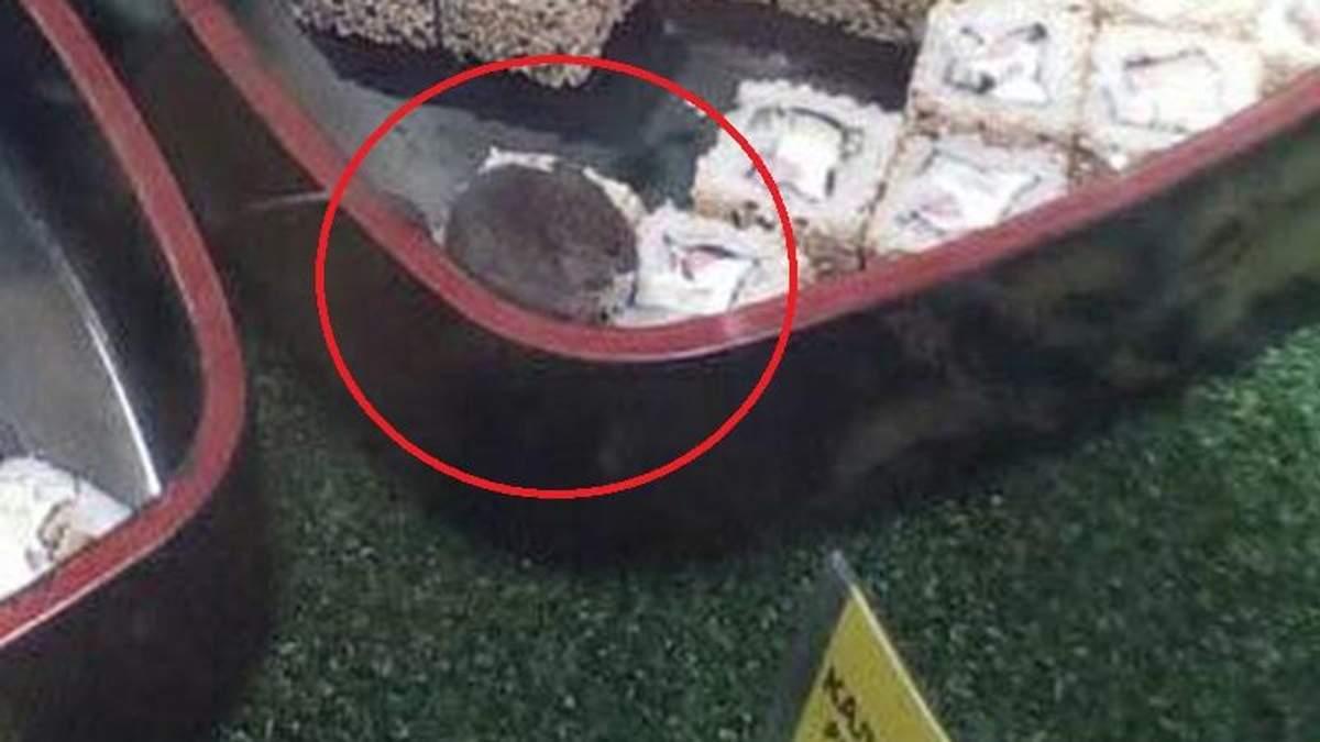 Серед готових суші в київському супермаркеті знайшли мишу: фотофакт