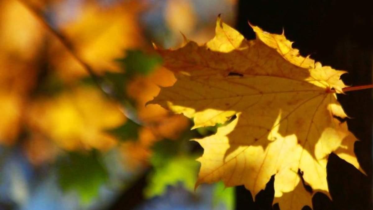 Спекотна осінь: Київ встановив новий температурний рекорд