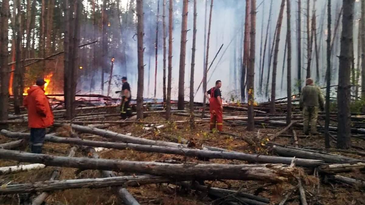 Пожар в 50 километрах от Чернобыля продолжается: фото и видео