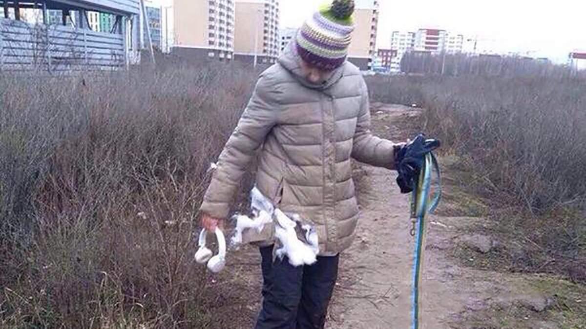 Бійцівські собаки покусали жінок під Києвом: власницею може бути відома ведуча (фото 18+)