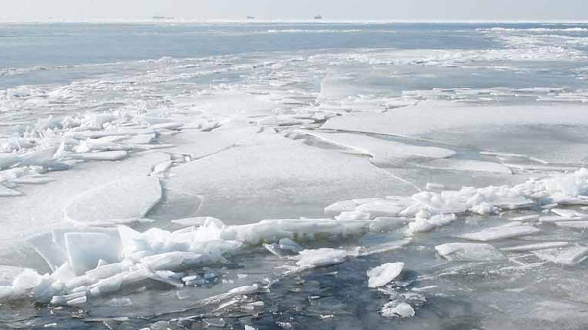 В Киеве предостерегают об опасности прогулок на тонком льду