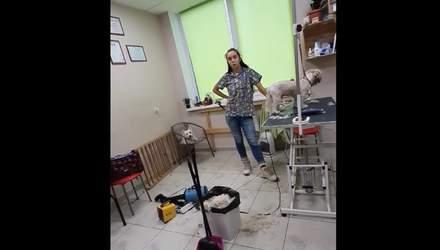 Ми обслуговуємо собак, а не людей: у Києві в грумінг-салоні відмовились говорити українською
